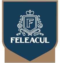 Logo Feleacul